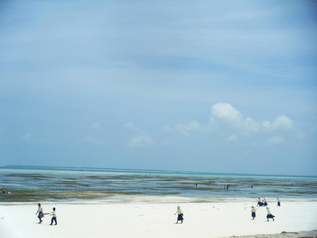 DSCF2776 1024x768 Sejour dune semaine à Zanzibar