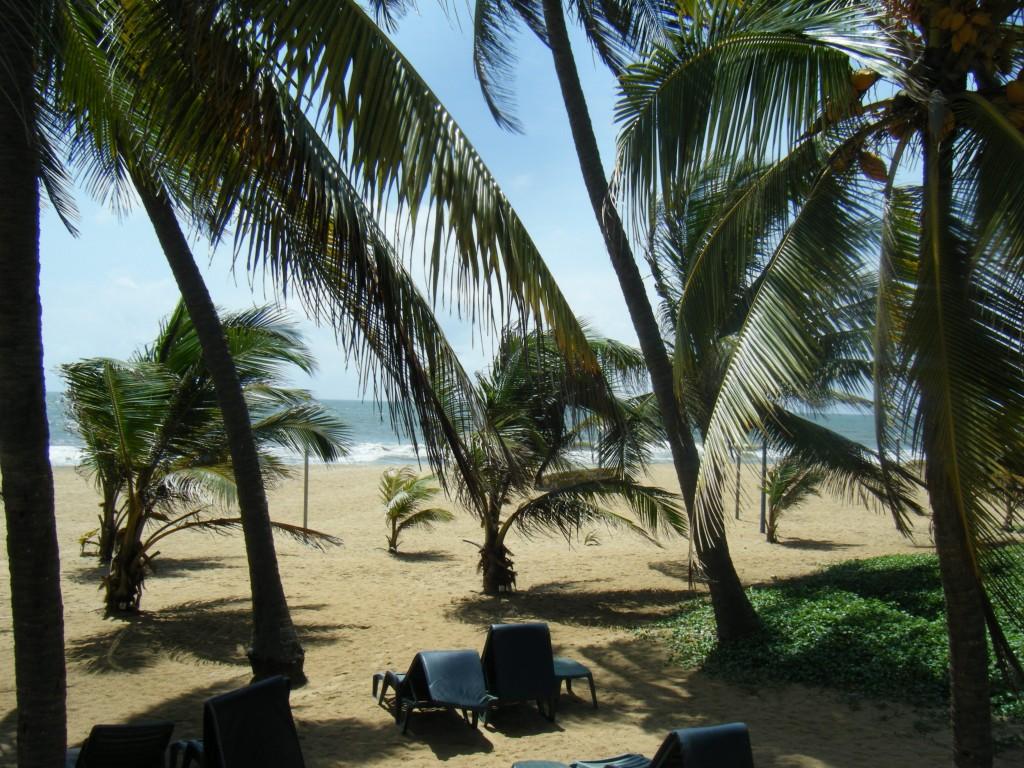 DSCF2841 1024x768 1er jour à Negombo