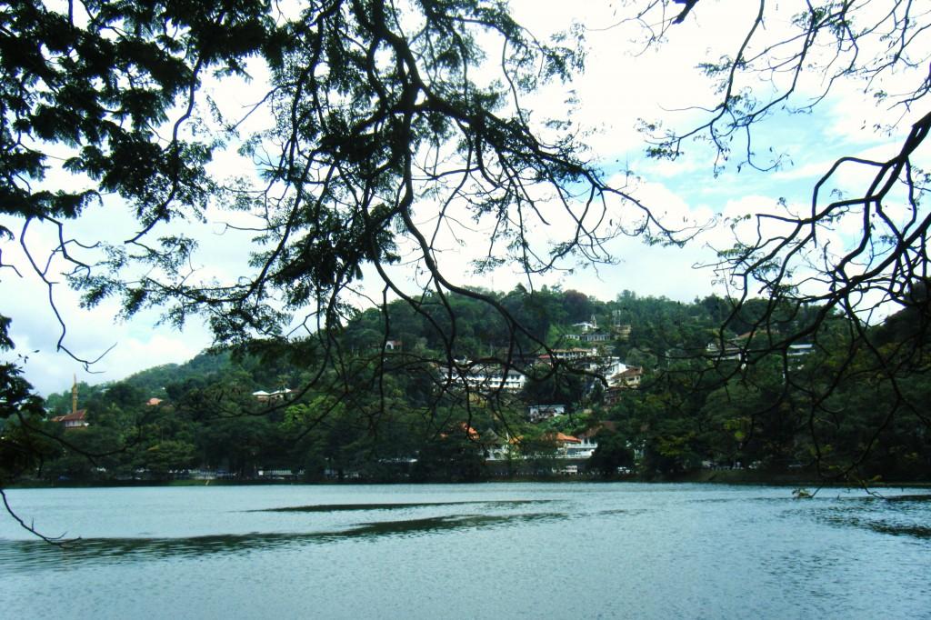 DSCF3009 1024x682 Une journée à Kandy