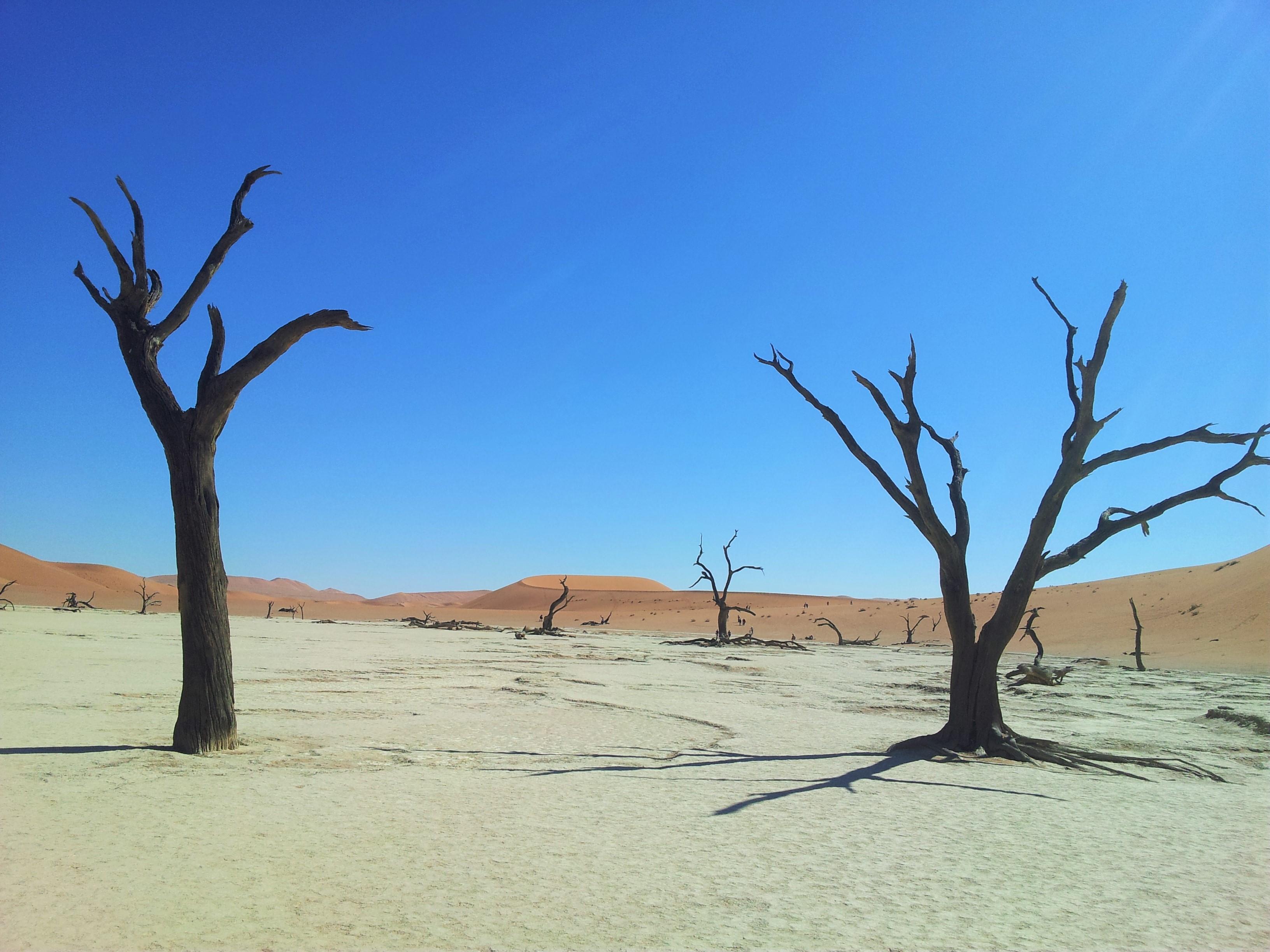 20160519 105446 Voyage de 2 semaines en Namibie en mai   Avant de partir