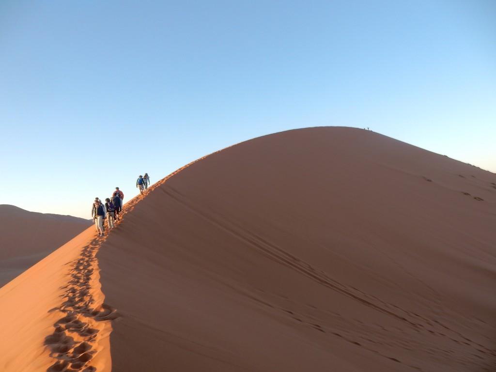 DSCN1620 1024x768 Le desert du Namib