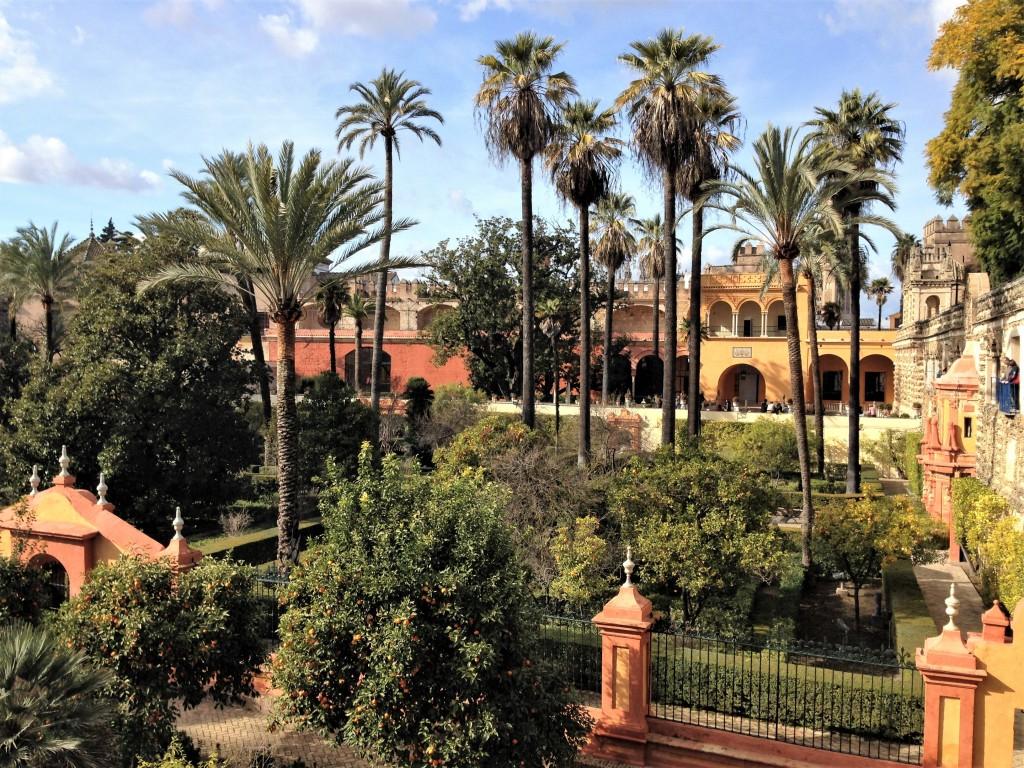 IMG 0410 1024x768 Week end solo à Séville   1er jour